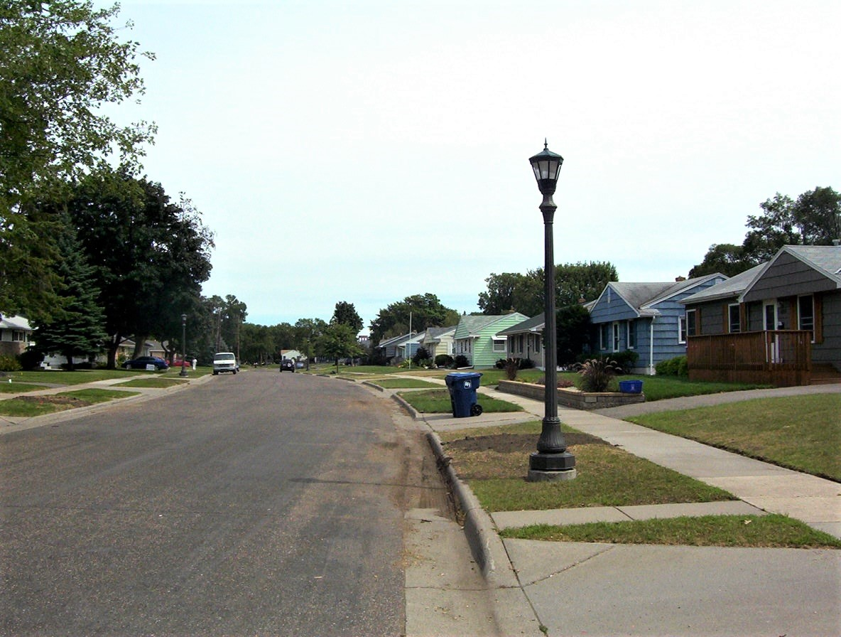 Neighborhood tree canopy after untreated EAB-infected ash trees removed