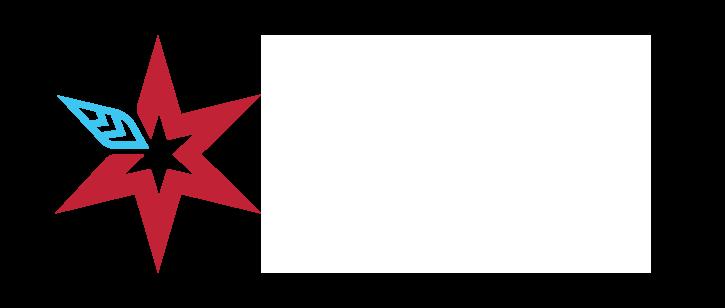 APIPSSA60